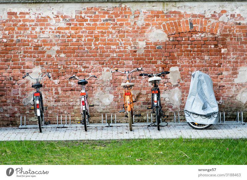 Fahrradparkplatz Platz Fahrradfahren Stadt grau grün rot Bewegung Mobilität Ordnung Fahrradständer parken Parkplatz Abstellplatz umweltfreundlich Farbfoto