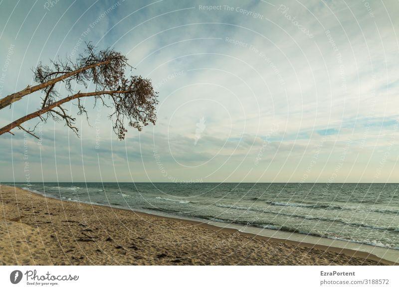 // Ferien & Urlaub & Reisen Tourismus Umwelt Natur Landschaft Sand Luft Wasser Himmel Wolken Frühling Sommer Klima Wetter Schönes Wetter Baum Wellen Küste