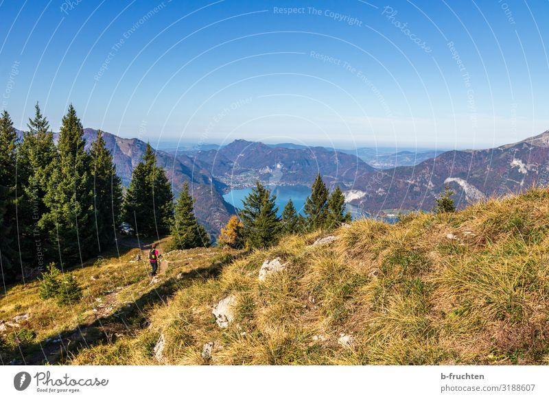 Wandern im Salzkammergut Ferien & Urlaub & Reisen Tourismus Ausflug Freiheit Berge u. Gebirge wandern Sport Frau Erwachsene 1 Mensch Natur Landschaft Himmel