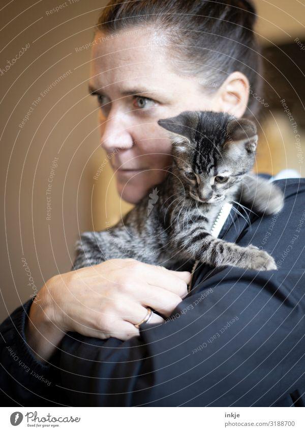 Katzenkind Lifestyle Freizeit & Hobby feminin Frau Erwachsene Leben Gesicht 1 Mensch 18-30 Jahre Jugendliche 30-45 Jahre Haustier Tierjunges festhalten tragen