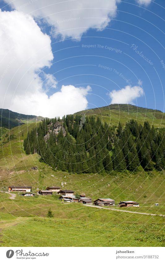 Mittelalm in den Alpen Alm Nadelwald Berge Almwiese Wolken Blauer Himmel Almhütten Österreich Bergwald