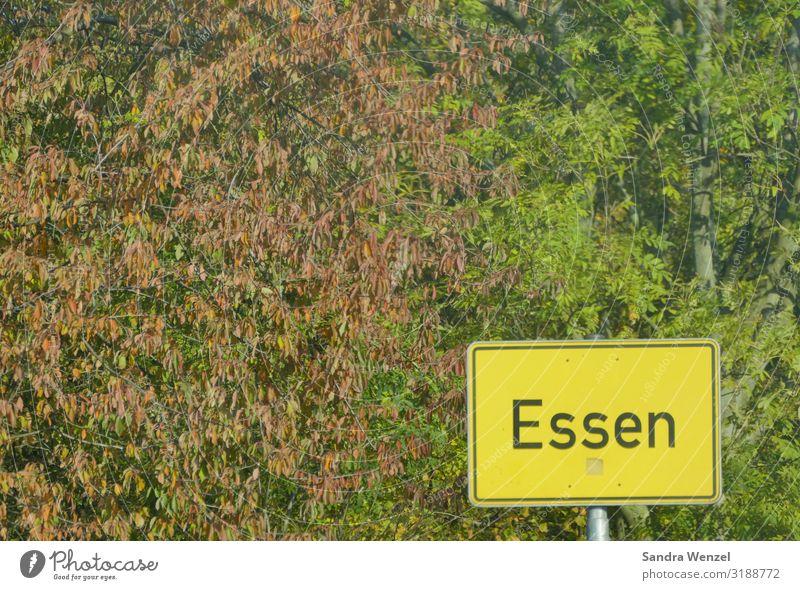 Essen Deutschland Europa Stadtzentrum Stadtrand füttern Ruhrgebiet bevölkert überbevölkert Ortsschild