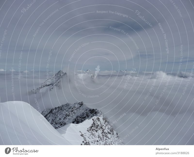 Gau in grau in grau Klima Klimawandel Eis Frost Felsen Alpen Berge u. Gebirge Kanton Wallis Gipfel Schneebedeckte Gipfel Gletscher Coolness kalt Glück