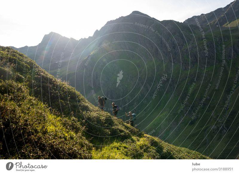 Bergläufer wandern Landwirtschaft Forstwirtschaft Umwelt Natur Landschaft Sommer Schönes Wetter Hügel Felsen Alpen Berge u. Gebirge Gipfel malfon malfontal