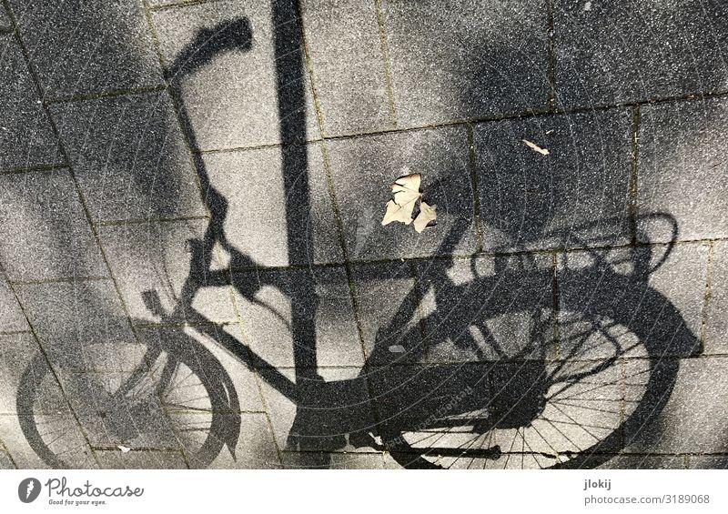 Sonnenrad Fahrradfahren Straße Wege & Pfade stehen Pause Abstellplatz Laternenpfahl Pflastersteine Sattel Lenkrad Speichen Pedal Gedeckte Farben Außenaufnahme