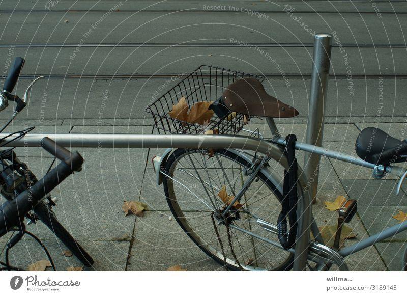 Fahrradfahren mit Herbstlaub im Gepäck Gepäckträger Gepäckablage parken Fahrradsattel Fahrradschloss Fahrradkorb Herbstblätter urban Blätter herbstlich