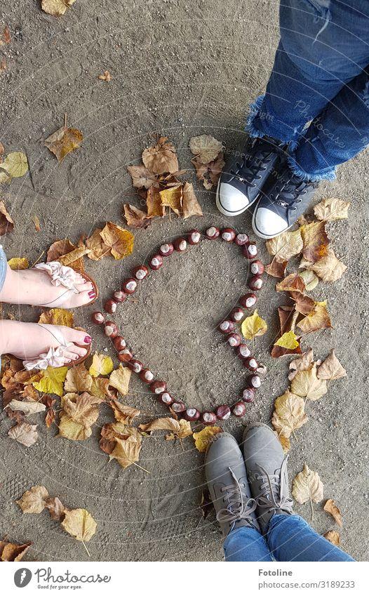 Herbstliebe Mensch Natur blau Blatt Beine gelb Umwelt natürlich feminin Fuß braun Sand Erde Schuhe Herz