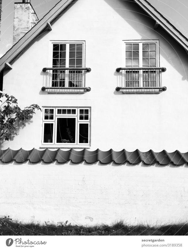 sicher ist sicher. Häusliches Leben Wohnung Haus Gras Einfamilienhaus Bauwerk Gebäude Architektur Mauer Wand Fassade Balkon Schornstein außergewöhnlich Angst