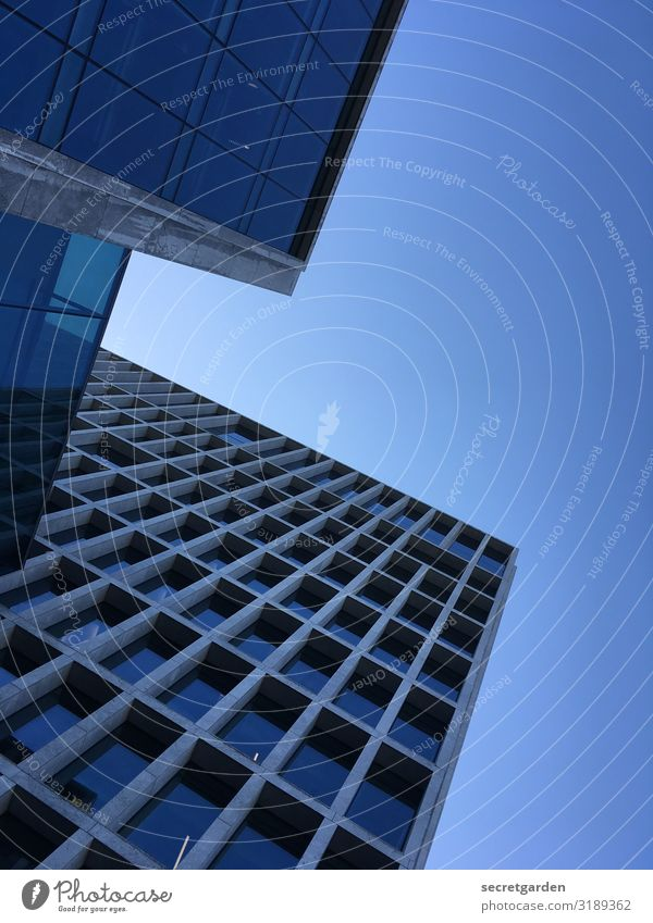 Kalte Architektur aus der Ameisenperspektive. architektonisch Architekturfotografie Fassade Glasfassade Fenster Gebäude Reflexion & Spiegelung Hochhaus abstrakt