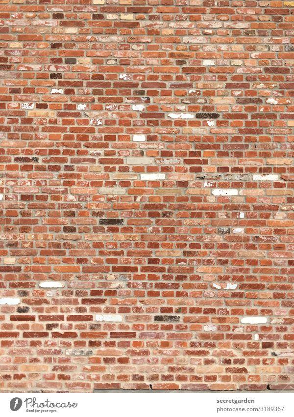 Systemrelevantes Gesprenkeltes. Wand ziegelstein ziegelrot Ziegel Ziegelmauer minimalistisch Textfreiraum Strukturen & Formen strukturell Muster Backstein Haus