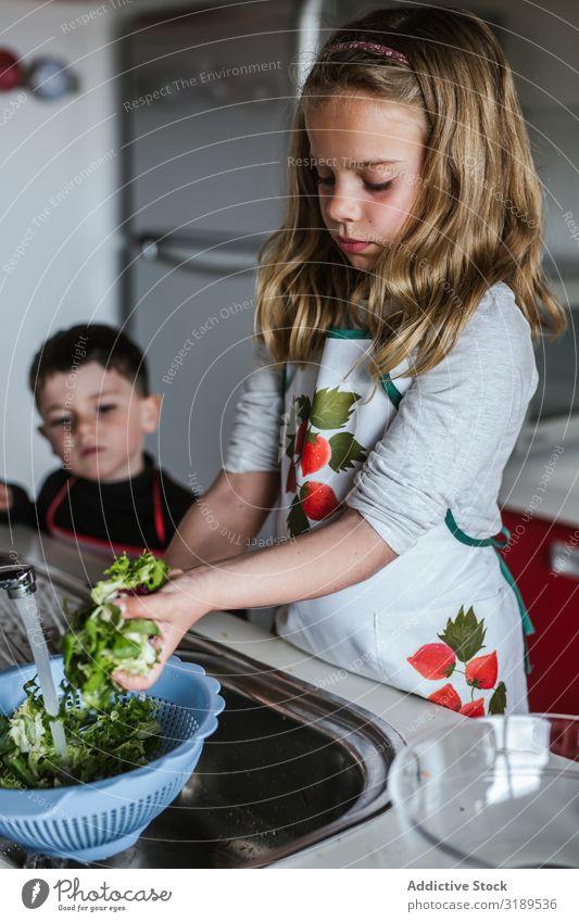 Kind wascht Kräuter für Salat Mädchen Wäsche waschen Hand Küchenkräuter Wasser Waschbecken Zapfhahn frisch Salatbeilage kochen & garen reif Gesundheit