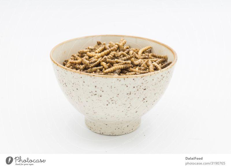 Mehlwürmer Krustentiere Tenebrio Molitor isoliert Essen Löffel Natur Tier Haustier Vogel Käfer Wurm Verpackung alt frieren braun gelb weiß acheta asiatisch