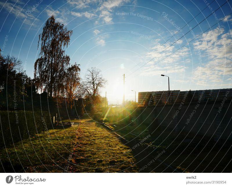 St. Marien Umwelt Pflanze Himmel Wolken Horizont Sonne Herbst Schönes Wetter Baum Gras Friedhof Bautzen Gebäude Mauer Wand Straßenbeleuchtung Laternenpfahl