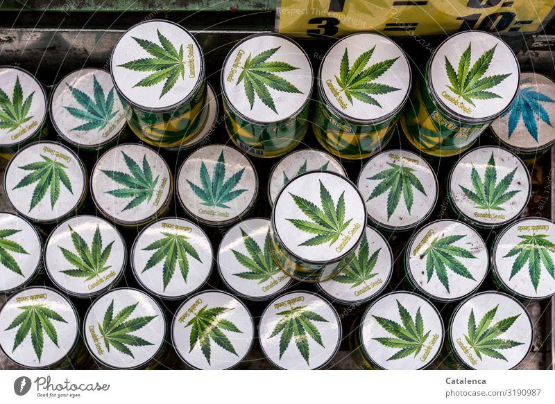 Seeds Starter Kit Gesundheit Rauchen Rauschmittel Medikament Pflanze Cannabis Cannabisblatt Cannabissamen Dose bedrohlich gelb grün weiß Freude gefährlich