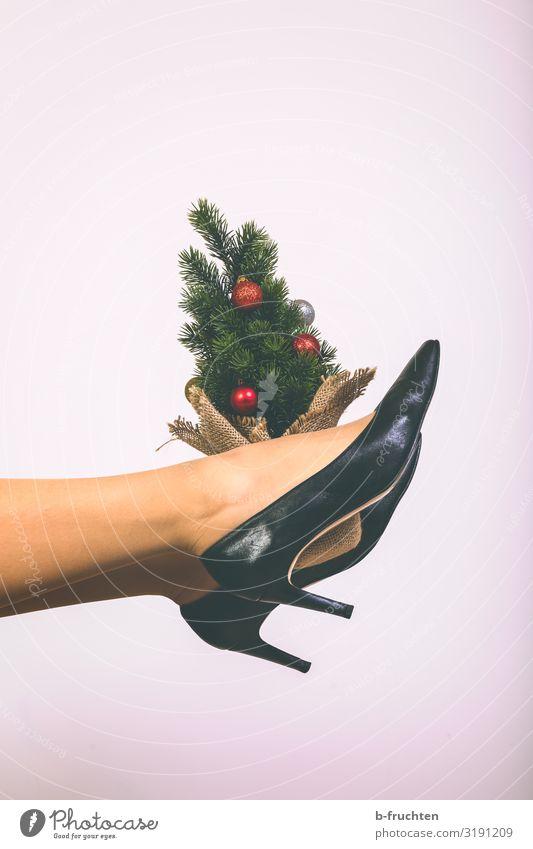 Kleiner Weihnachtsbaum Lifestyle Stil Freude Freizeit & Hobby Wohnung Feste & Feiern Weihnachten & Advent Baum Strumpfhose Schuhe Damenschuhe berühren Bewegung