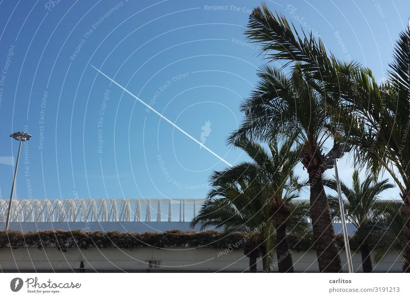 Abreisen Flugzeug Flugzeuglandung Ferien & Urlaub & Reisen Tourismus Mallorca Flughafen Palma de Mallorca Ballermann Junggesellenabschied