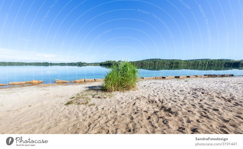 Environment around Lake Murner, Wackersdorf Bavaria Erholung Ferien & Urlaub & Reisen Camping Fahrradtour Sommer wandern Natur Wasser See Schwimmen & Baden