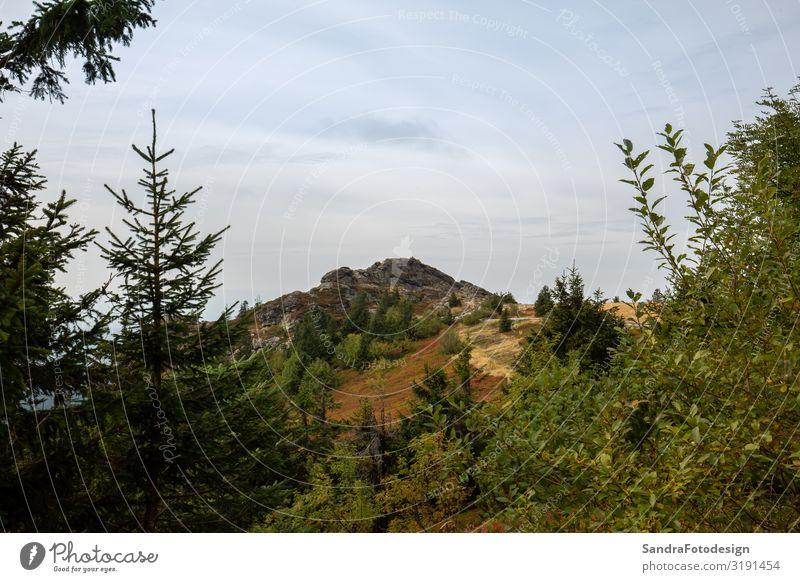 Landscape picture at the big Arber in Bavaria Ferien & Urlaub & Reisen Sommer Berge u. Gebirge wandern Natur Landschaft springen arber mountain autumn bavaria