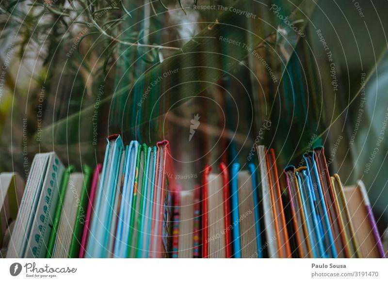 Farbe Lifestyle Leben Kindheit Kultur authentisch lernen Buch kaufen lesen nebeneinander Bücherregal fluchtend