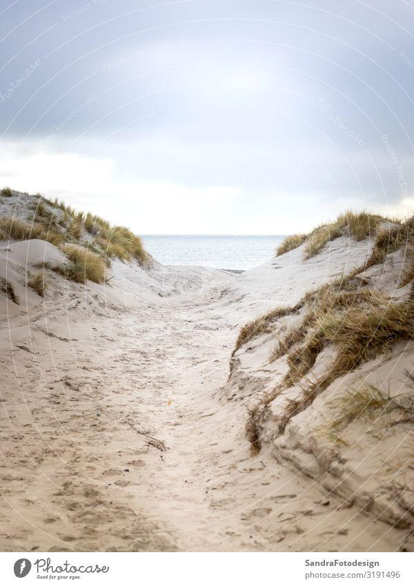 Dune landscape on the island Helgoland Erholung Ferien & Urlaub & Reisen Strand Meer Natur Landschaft Sand Horizont Tideland adventure beautiful clouds coast