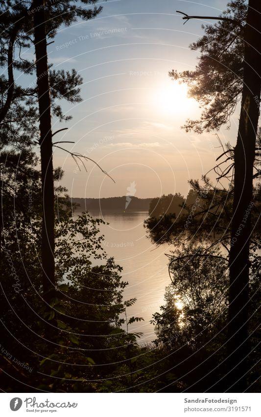 Landschaft am Murner See, Wackersdorf, Bayern Erholung Schwimmen & Baden Ferien & Urlaub & Reisen Camping Fahrradtour wandern Fahrradfahren tauchen Natur Wasser
