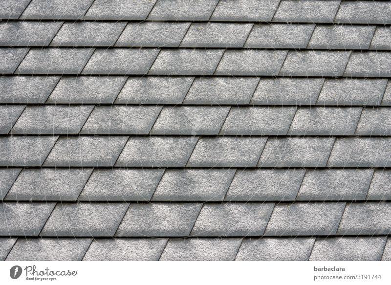 Schneemuster Winter Dach Dachziegel Linie Streifen grau schwarz weiß Design Klima Ordnung Schutz Gedeckte Farben Außenaufnahme Nahaufnahme Detailaufnahme