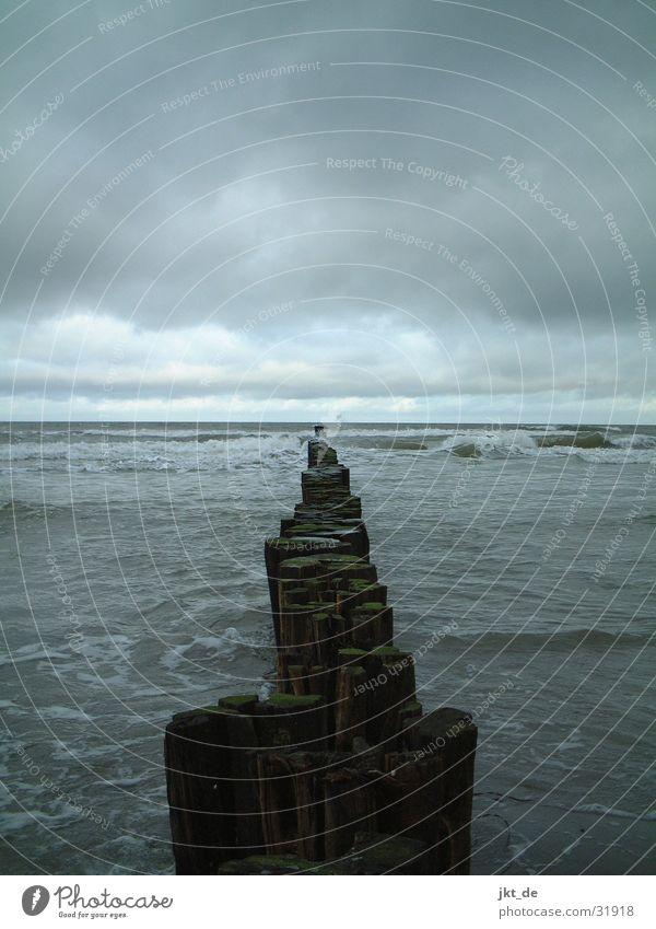 Fischland im Winter Himmel Wolken Horizont Ostsee Ahrenshoop