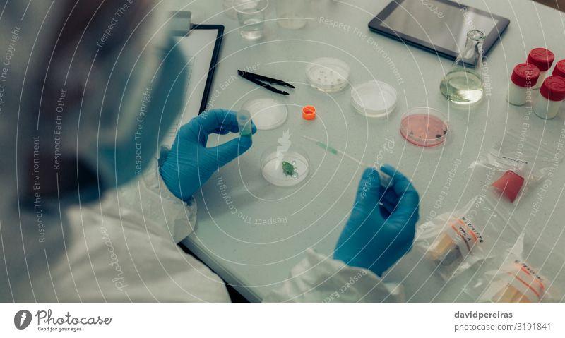 Wissenschaftlerin testet Antivirus in einem Labor Medikament Prüfung & Examen Mensch Frau Erwachsene Hand Fluggerät Handschuhe Desaster
