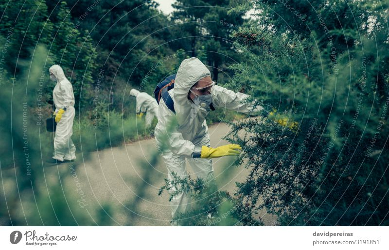 Menschen mit Schutzanzügen auf der Suche nach Beweisen Arbeit & Erwerbstätigkeit Frau Erwachsene Mann Pflanze Straße PKW Handschuhe Krise Virus Seuche suchend