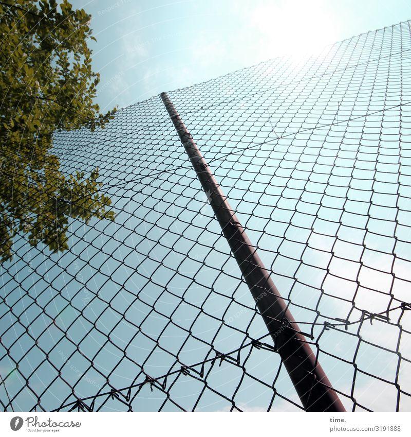 Geschichten vom Zaun (XLIX) Sportstätten Himmel Wolken Schönes Wetter Baum Zaunpfahl Maschendraht Maschendrahtzaun Linie Netzwerk heiß hell Sicherheit Schutz