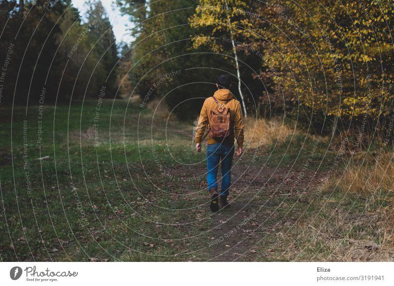Ein Mann alleine auf einem herbstlichen Spaziergang durch den Wald spazieren Ausflug Natur Herbst Bäume Rucksack wandern Mensch frische Luft naturverbunden