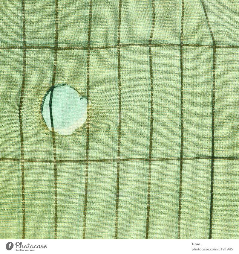 Geschichten vom Zaun (XLIII) Arbeitsplatz Baustelle Handwerk Loch Linie Netz Netzwerk grün Sicherheit Schutz Wachsamkeit Leben Neugier Interesse Überraschung