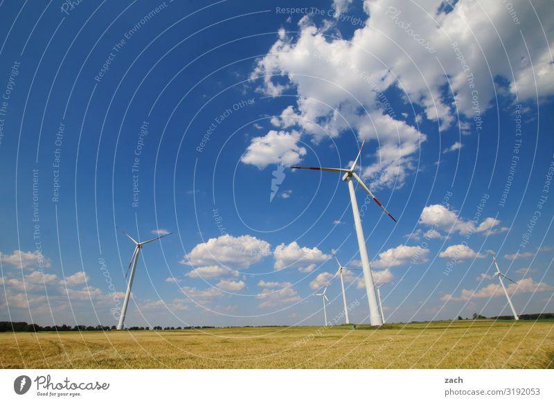 Windmaschinen Himmel Pflanze blau weiß Wolken Umwelt Wiese Gras Feld Energiewirtschaft Schönes Wetter Klima Landwirtschaft Windkraftanlage Umweltschutz