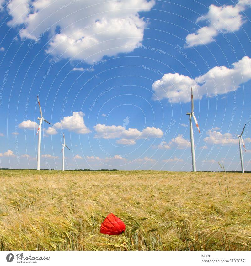 Mohnblüte Landwirtschaft Forstwirtschaft Energiewirtschaft Erneuerbare Energie Windkraftanlage Energiekrise Landschaft Himmel Wolken Schönes Wetter Pflanze