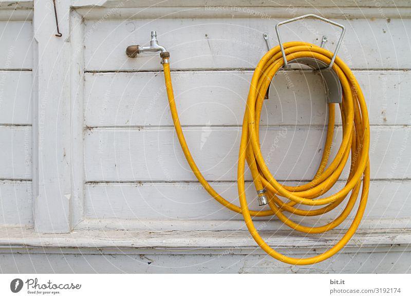 Gelber Gartenschlauch, vor weißer Wand. Arbeit & Erwerbstätigkeit Beruf Handwerker Gartenarbeit Wasser Mauer Fassade hängen trocken gelb Umwelt Schlauch