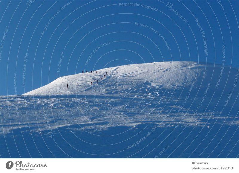 Eiszeit | Gletscher Menschengruppe Umwelt Urelemente Klima Klimawandel Schönes Wetter Frost Alpen Berge u. Gebirge Monte Rosa Gipfel Schneebedeckte Gipfel gehen