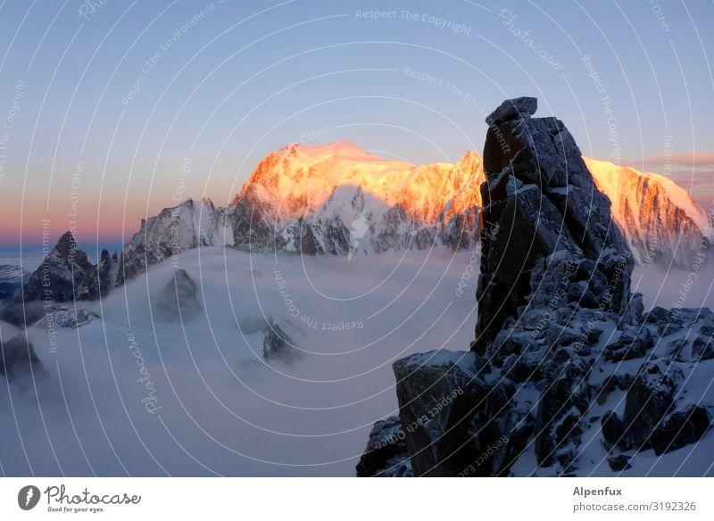 Alpenglühen XXL Klima Klimawandel Felsen Berge u. Gebirge Mont Blanc Gipfel Schneebedeckte Gipfel Gletscher leuchten Freude Glück Zufriedenheit Lebensfreude