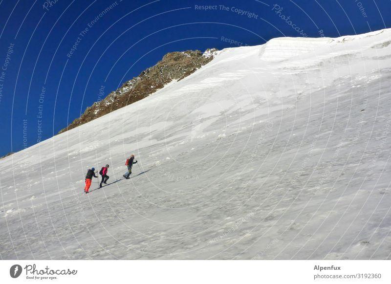 Leinenzwang Mensch 3 Schönes Wetter Eis Frost Felsen Alpen Berge u. Gebirge Gletscher laufen kalt Coolness Optimismus Erfolg Willensstärke Mut Tatkraft