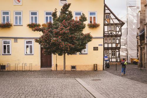 Schmalkalden Altmarkt Stadt grün Baum Herbst gelb Umwelt Deutschland Tourismus braun Park Europa historisch Baustelle Altstadt Thüringen Fachwerkfassade