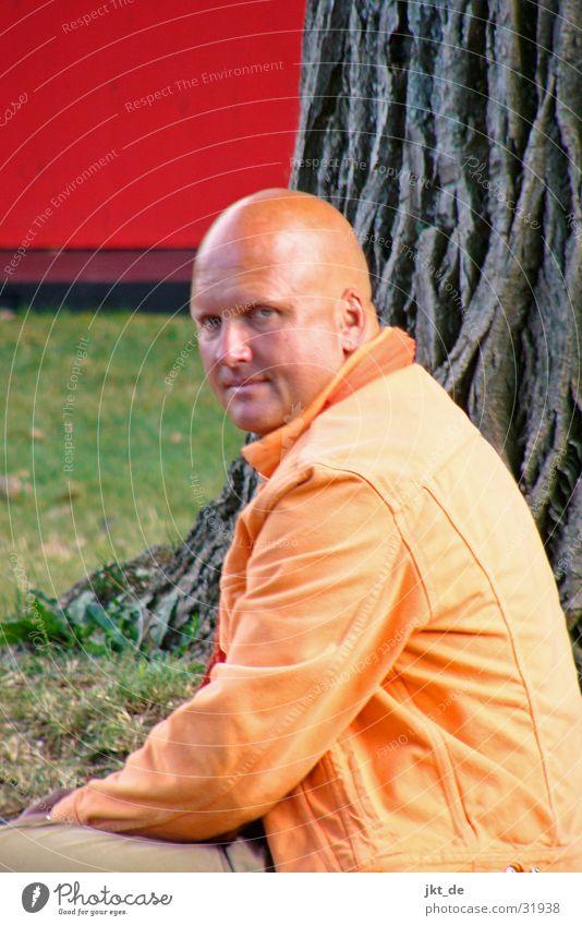 wahrsager Mann Baum rot orange Glatze Esoterik Wahrsagerei