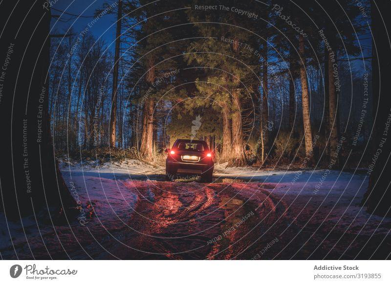 Autofahren auf schmutziger Straße im Abendwald PKW Wald Winter Nacht Reiten dreckig Rücklicht Glanz Illumination Schnee Menschenleer kalt Coolness Jahreszeiten