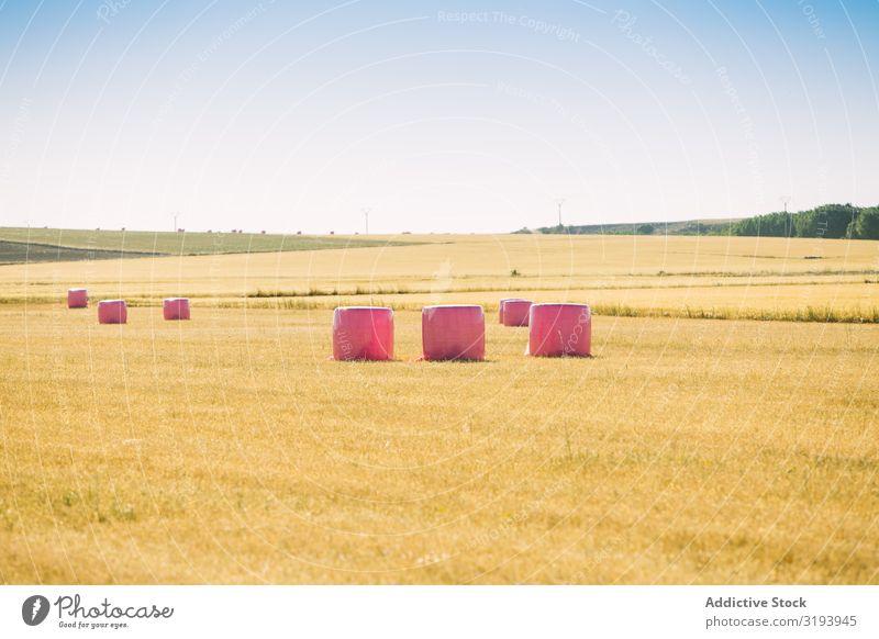 Ballen mit rosa Kunststoff umwickelt Landwirtschaft Strohballen Frauenbrust Krebs umhüllen Müsli Landschaft Bauernhof Feld Gold Getreide Ernte Heu Heugarben