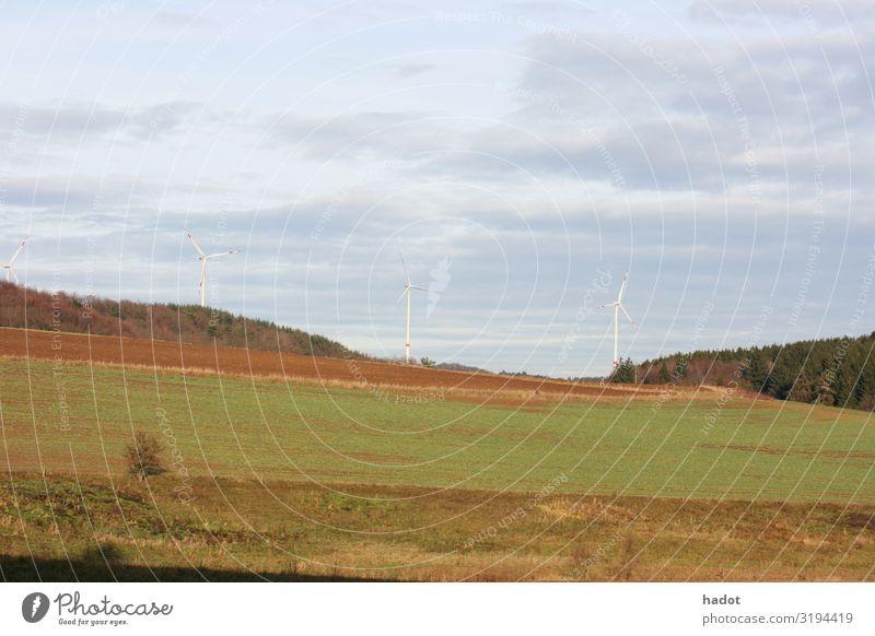 Felder und Wälder Getreide Berge u. Gebirge Landwirtschaft Forstwirtschaft Natur Landschaft Baum Wiese blau Großgrundbesitz Wald Ähren Getreidefeld Weizen