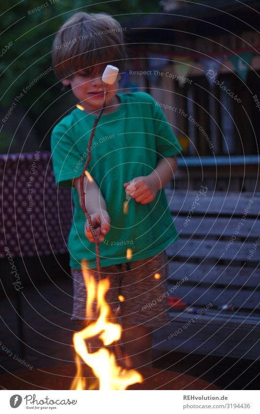 Kind mit Marshmallow am Feuer Lagerfeuer marshmallow heiß Sommer warm flammen Hitze TShirt Junge Kindheit Garten Essen süß Lebensmittel lecker Freude Glück