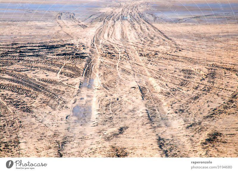 One way or another Umwelt Sand Klima Strand Wüste Menschenleer fahren braun Irritation Wege & Pfade Zerstörung folgen wühlen Spuren Fahrbahn Reifenprofil