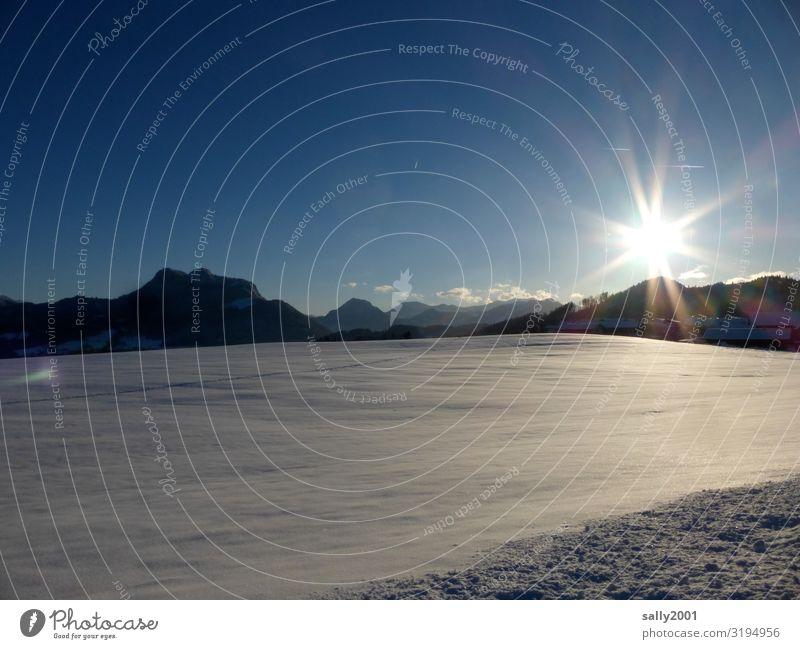 Wintersonne... Landschaft Sonne Sonnenlicht Schönes Wetter Schnee Alpen Berge u. Gebirge ästhetisch Ferne frei frisch kalt Einsamkeit Hoffnung Natur rein ruhig
