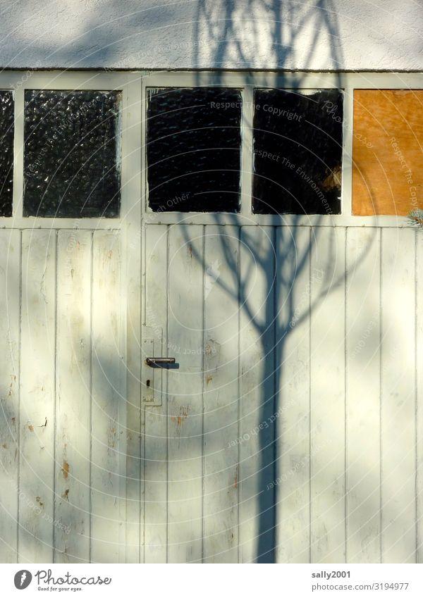 Eingang vom Baum beschattet... Tor Tür Schatten Schattenwurf Türklinke Holztor Holztür geschlossen alt Eingangstor Sonnenlicht Türgriff weiß Winter verlassen