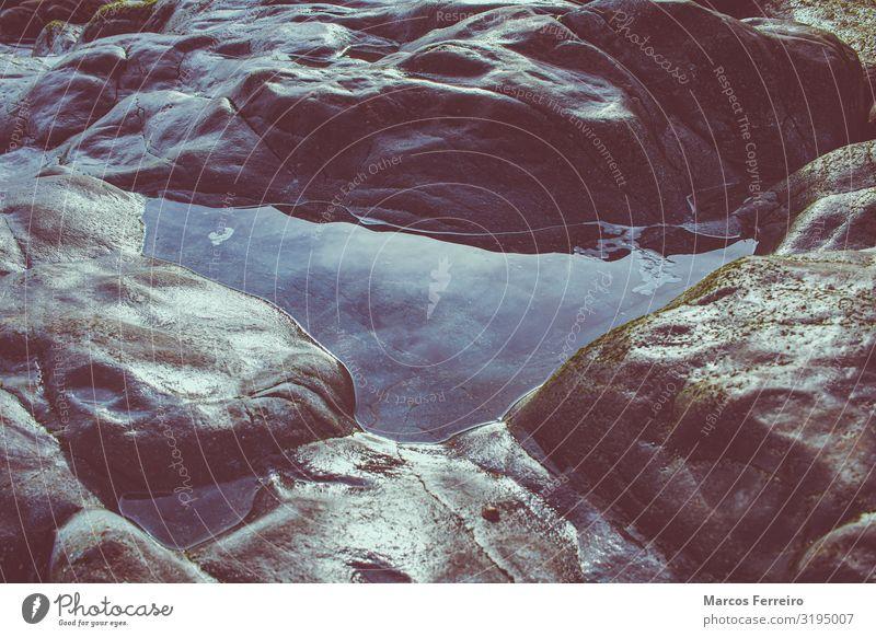 Wasser auf den Felsen der Atlantikküste Umwelt Natur Urelemente Erde Küste Nordsee ruhig Farbfoto Außenaufnahme Menschenleer Morgen