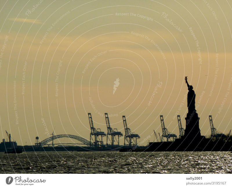 Freedom... Freiheitsstatue Wahrzeichen Sehenswürdigkeit New York City Amerika USA Hafenstadt Bekanntheit fantastisch Kraft Sightseeing Skulptur Denkmal Kran