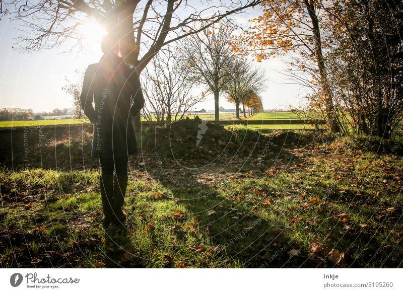 Herbstspaziergang Lifestyle Freizeit & Hobby Ausflug Herbstbeginn feminin Junge Frau Jugendliche Erwachsene Leben Körper 1 Mensch Natur Landschaft Sonne